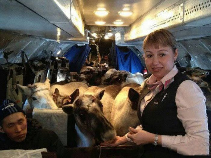Images From Russia That Will Shock Your Eyes (40 pics)