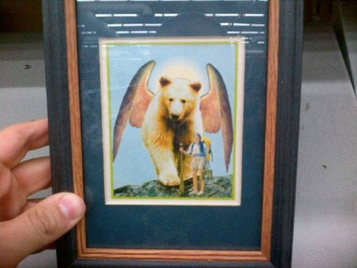 You Have To Wonder How Thrift Shops Ever Find This Stuff (25 pics)