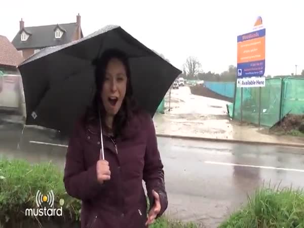 Reporter Gets Drenched By Huge Mud Puddle