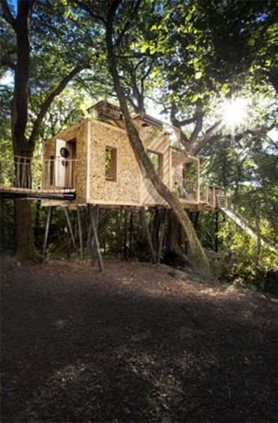 Live Out Your Fantasies In This Luxury Treehouse In Dorset (32 pics)