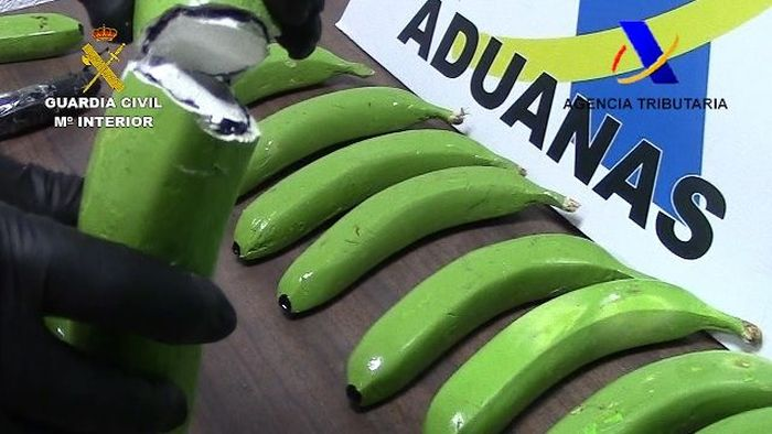 Spanish Police Found Cocaine In A Batch Of Fake Bananas (6 pics)