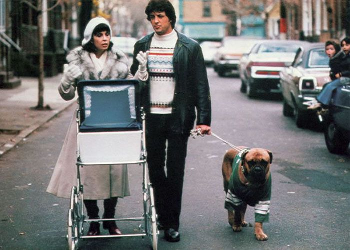 Sylvester Stallone Shares Touching Tribute To His Old Dog (8 pics)
