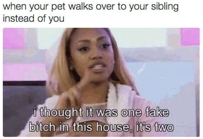 Memes You Should Send To Your Sister Right Away (32 pics)