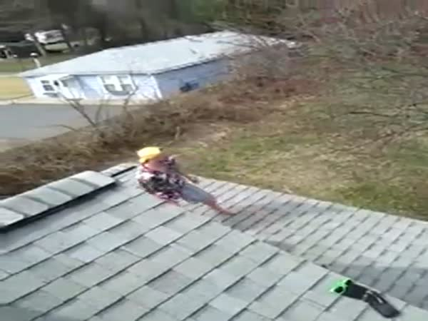 Drunk Guy Knocks Himself Out After Jumping Off House Into Tree