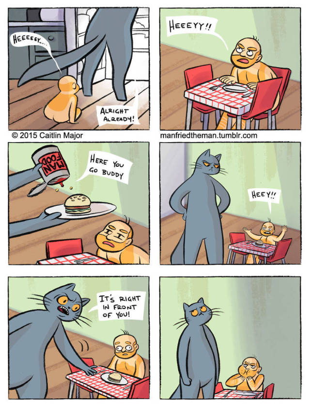 If Humans Swapped Roles With Their Cats (30 pics)