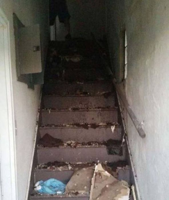 Neighbors Discover Horrific Abandoned Duplex (15 pics)