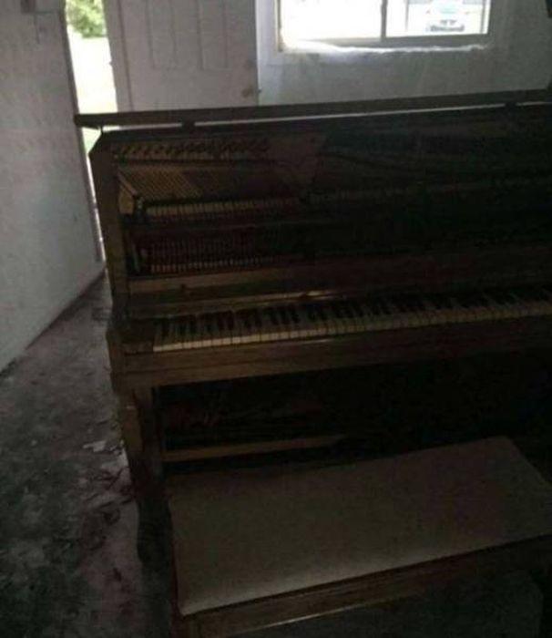 Neighbors Discover Horrific Abandoned Duplex (15 pics)