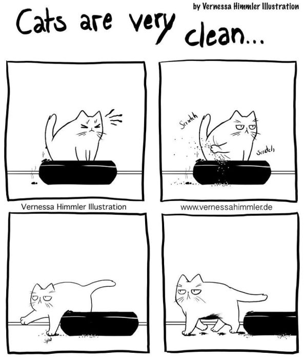 Funny Comics About Life With Two Cheeky Cats (21 pics)