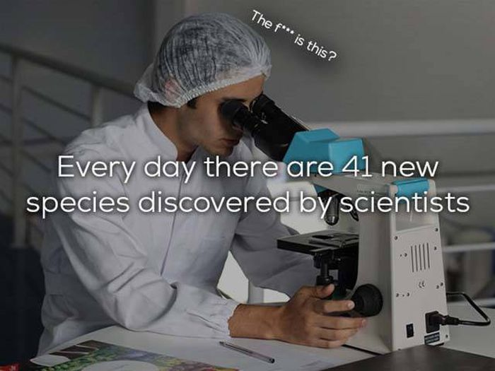 Science Facts That We All Need In Our Lives (25 pics)