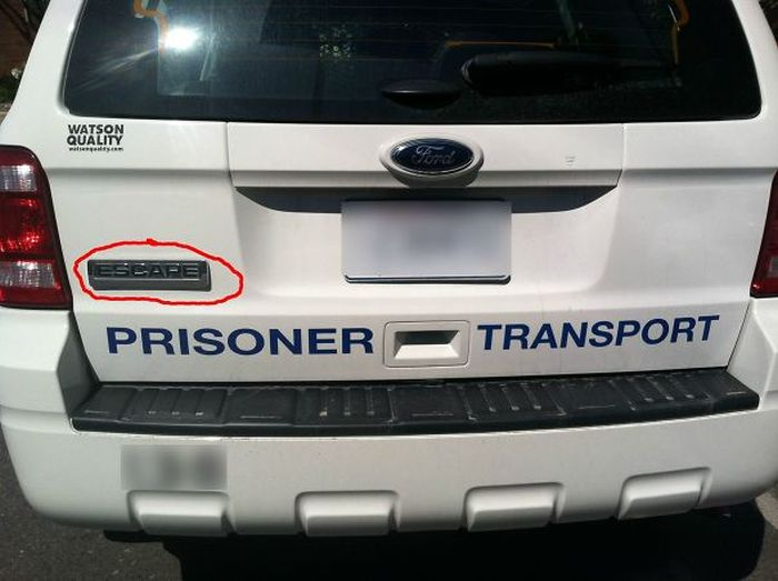 Extremely Ironic Things That Really Happened (40 pics)