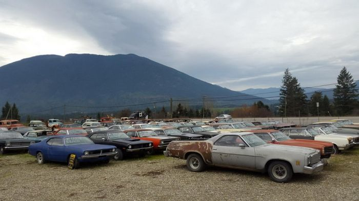 Canadian Sells Farm With A Collection Of 340 Rare Cars (30 pics)