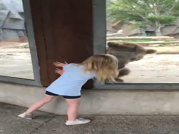 Bear Plays Peekaboo With Little Girl