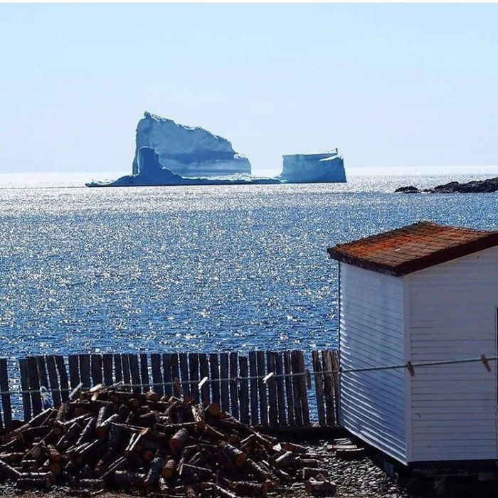 Stunning Photos Of Alley Of The Icebergs In Ferryland (15 pics)