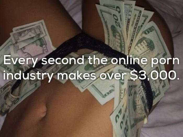 Seductive Facts About Porn That Will Make You Smarter (17 pics)