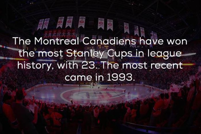 Hockey Facts That You Need In Your Life Right Now (24 pics)