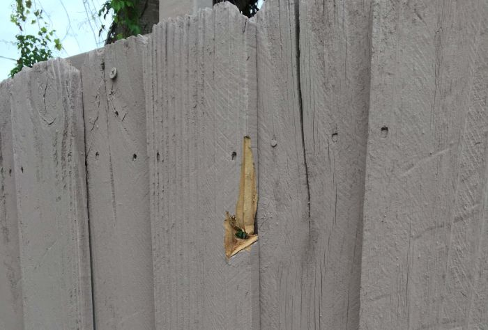 Stray Bullet Hits The Wall Three Feet From Where His Fiancee Sleeps (7 pics)