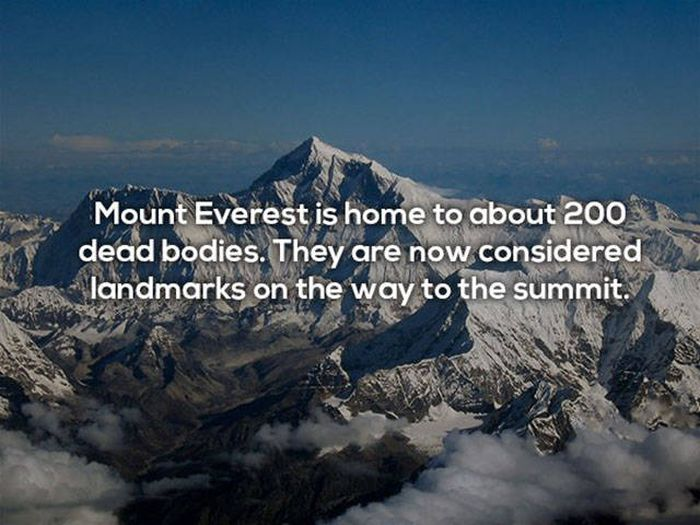 These Facts Prove That Death Is Always Close (25 pics)