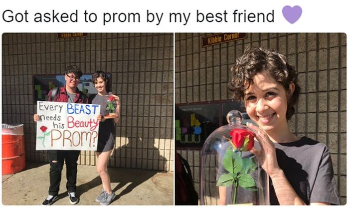 Extraordinary And Impressive Prom Proposals (15 pics)