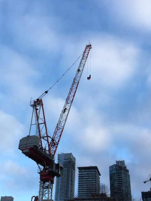 Woman Rescued From Crane On Wellesley Street (6 pics + video)
