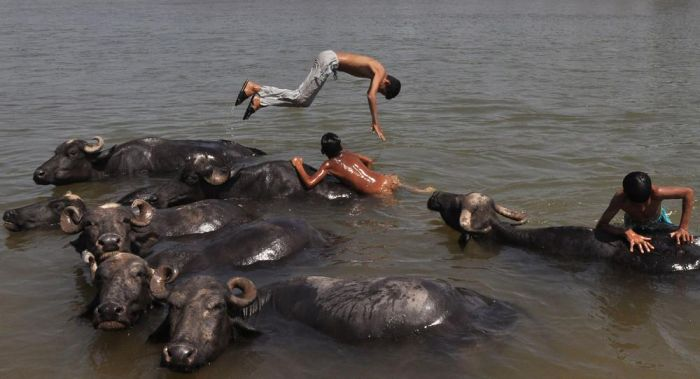 Pics That Show Everyday Life In India (31 pics)