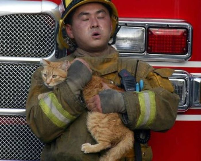 Firefighters Know That Every Life Matters (47 pics)