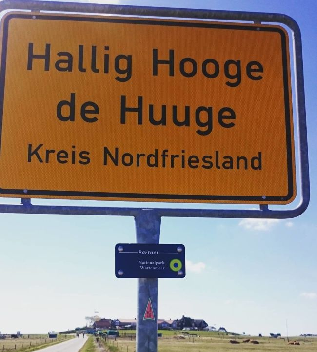 The Hallig Islands Are A Special Place (20 pics)
