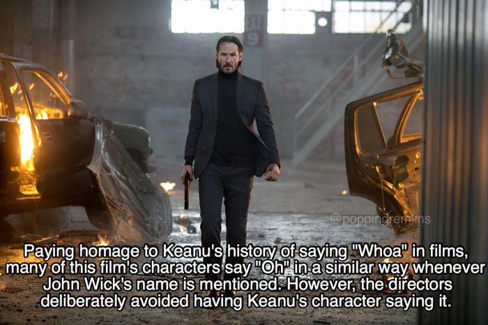 Killer Facts You Need To Know About John Wick (19 pics)
