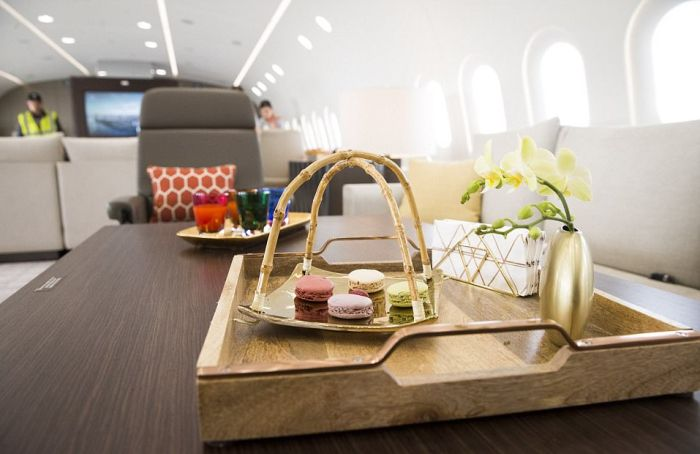 This Private Jet Is Basically A Flying Penthouse (11 pics)