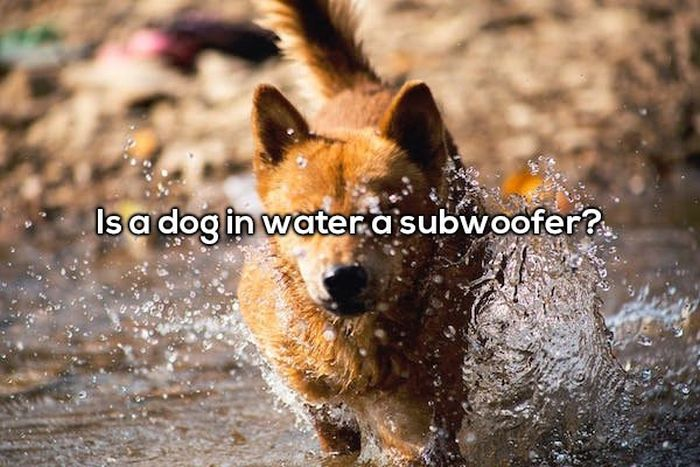 Shower Thoughts That'll Cause You To Waste Water (20 pics)