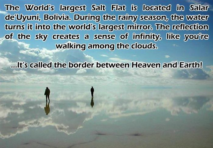 Awesome And Interesting Facts That Will Stimulate Your Brain (43 pics)