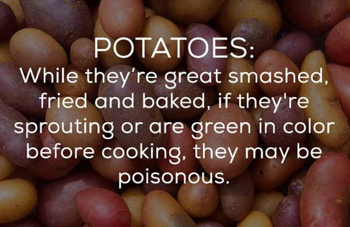 Be Careful Because There's A Bunch Of Ways Your Food Can Kill You (16 pics)
