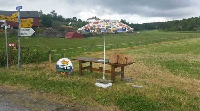 Norway Has A Self Service Potato Farm (4 pics)