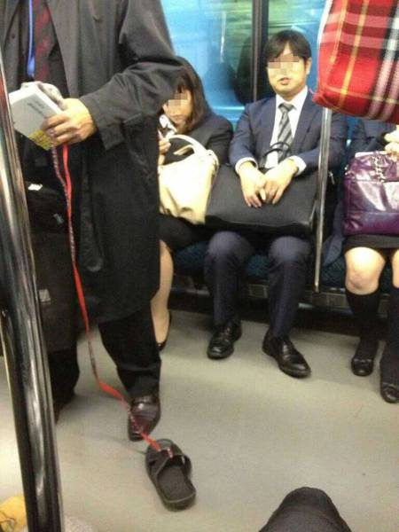 Humans Can Be So Awkward Sometimes (41 pics)