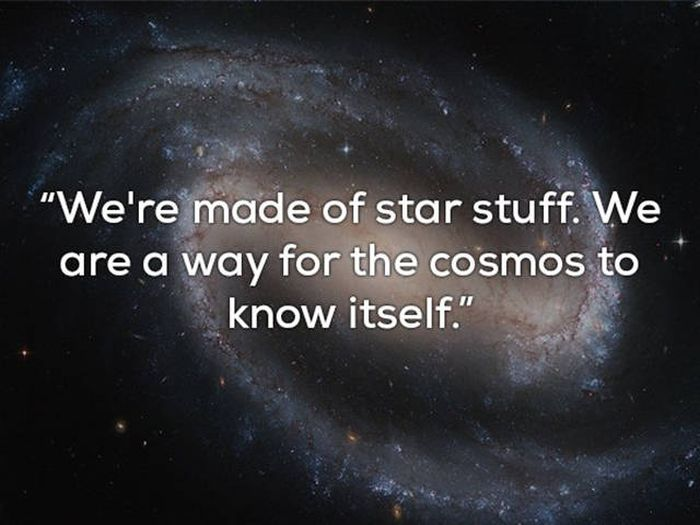 Carl Sagan Wanted To Reveal The Secrets Of The Universe (24 pics)