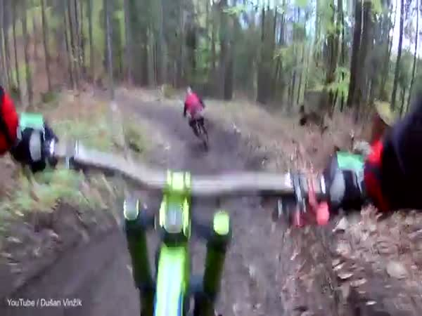 A Mountain Biker Is Chased By A Bear In Slovakia