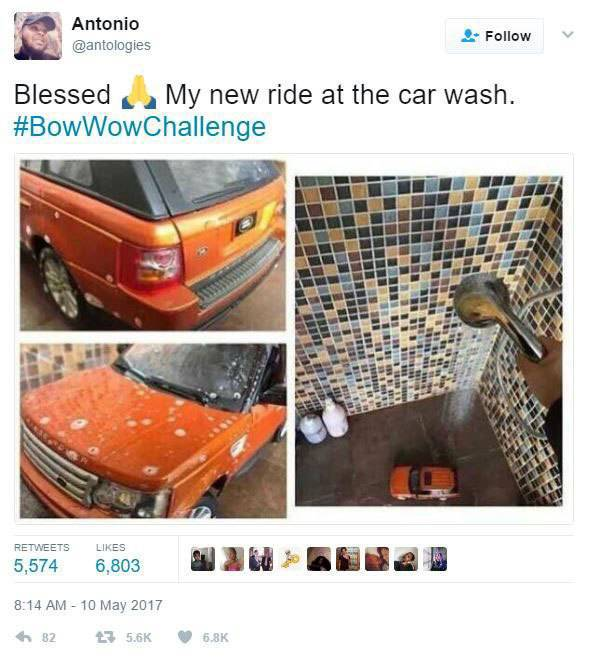 The Internet Owned Bow Wow With The Bow Wow Challenge (20 pics)