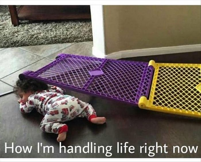 Being An Adult Is So Much Harder Than It Looks (22 pics)