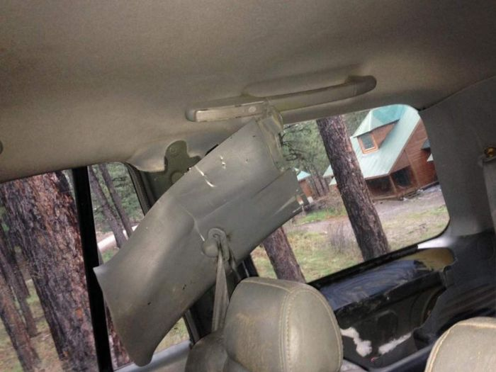 Bear Destroys Vehicle In Forest Lakes Subdivision (5 pics)