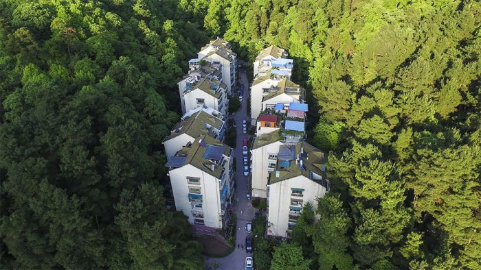 This Residential Complex Is Tucked Away In A Natural Sea Of Green (3 pics)