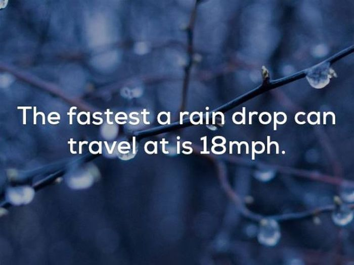 Facts About Weather That Will Blow Your Mind Pics - 22 interesting facts that will blow your mind