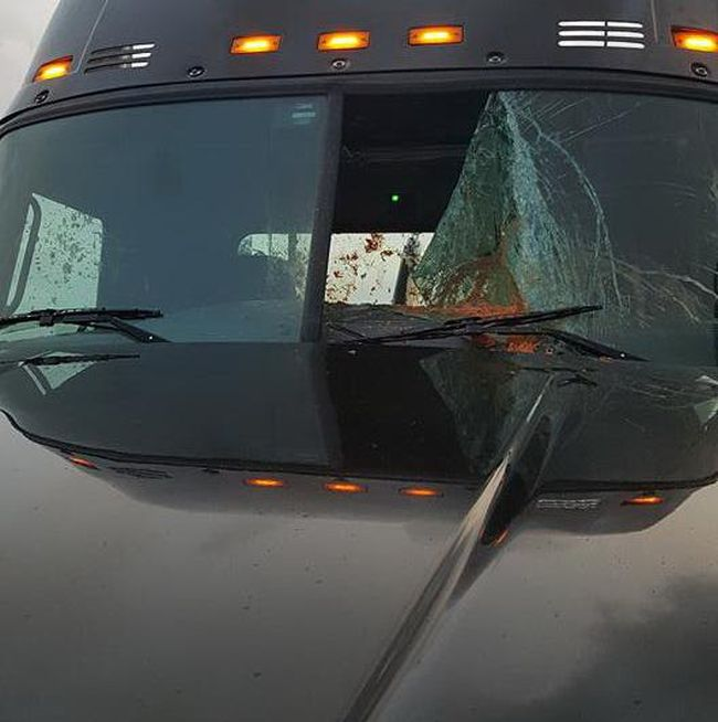 Mail Truck Gets Destroyed By Spaghetti (4 pics)
