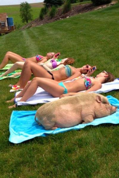 Something Is Very Wrong With These Photos (48 pics)
