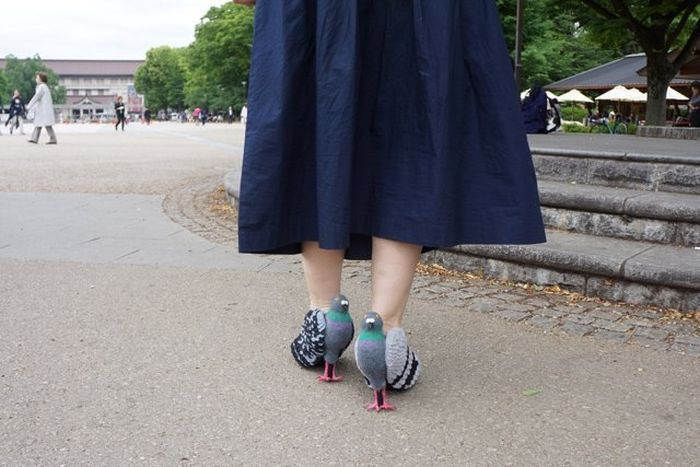 These Shoes Look Just Like Pigeons (6 pics)