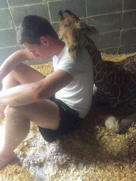 Photos That Tell A Story With No Words (52 pics)