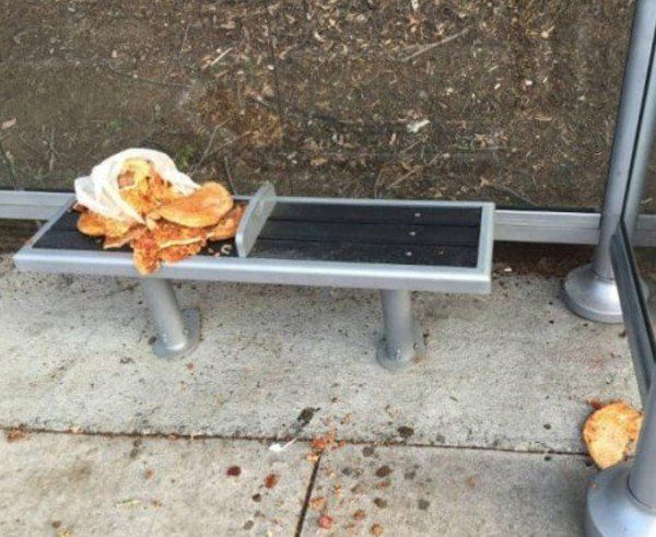 People Who Should Be Banned From Pizza Forever (21 pics)