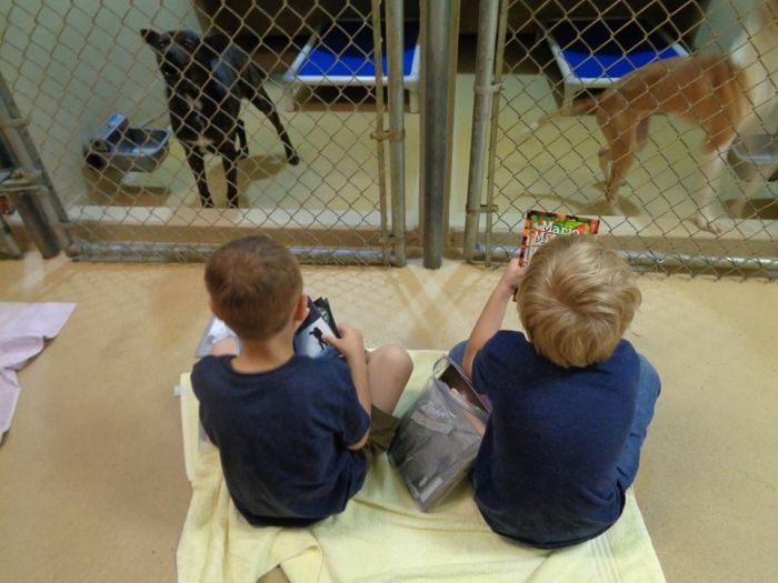 Children Reading To Shelter Dogs Is Adorable (9 pics)