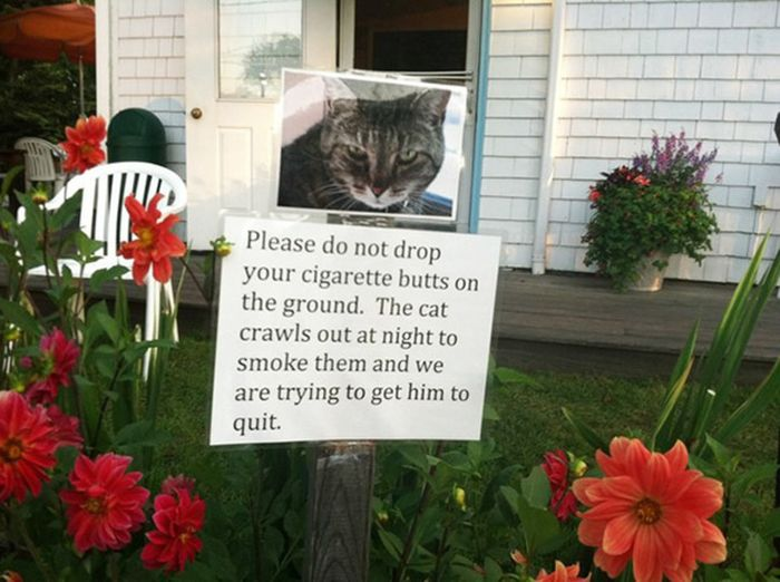 The Most Hilarious Yard Signs That Have Ever Been Created (25 pics)