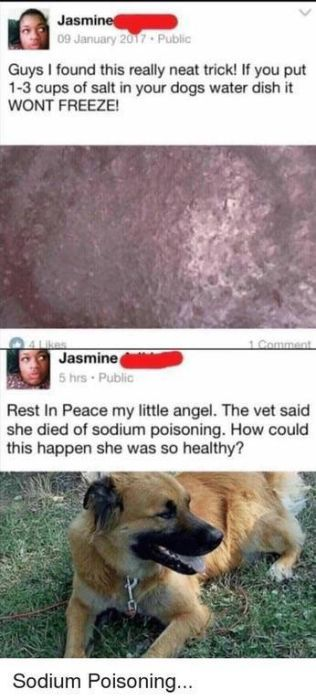 You Will Be Able To Feel The Cringe Invading Your Brain (52 pics)