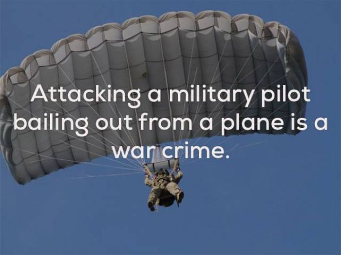 Strange Facts That Will Keep You Up At Night (23 pics)
