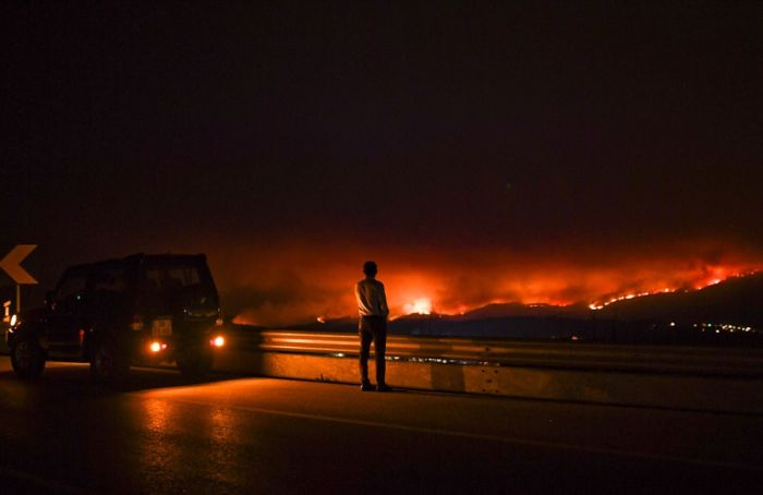 Forest Forest Fires In Portugal Claim Lives Of People Trapped In Cars (15 pics)